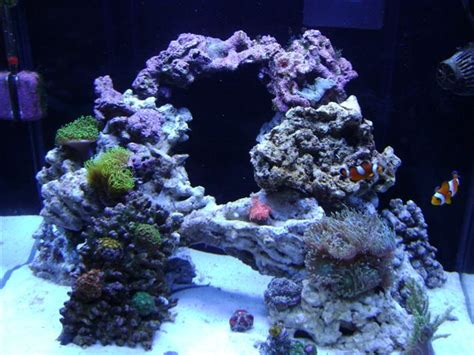 aquascaping live rock ideas 17 best ideas about reef aquascaping on reef