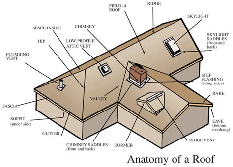 Flat Roof Part Diagram by Anatomy Of A Roof