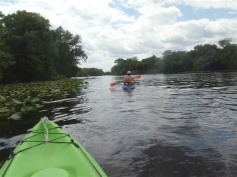 Central Park Boat Paddling by Blue Run St S River East Central Fl