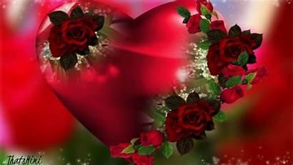 Heart Flowers Roses Flower Wallpapers Pretty Rose
