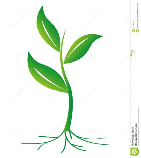 Plant Clip 15 Growing Plant With Roots Vector Images Seed Growing
