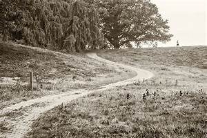 The gallery for --> Winding Path Black And White