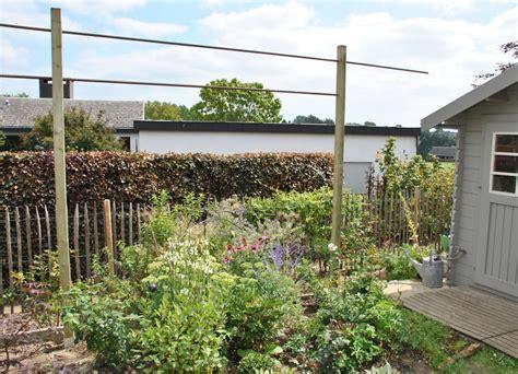 support rosier grimpant structures pour rosiers grimpants les chroniques de mon jardin