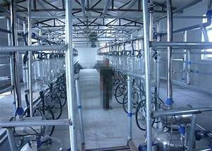 32 Milking Units Quick
