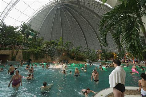 Indoor Tropical Oasis