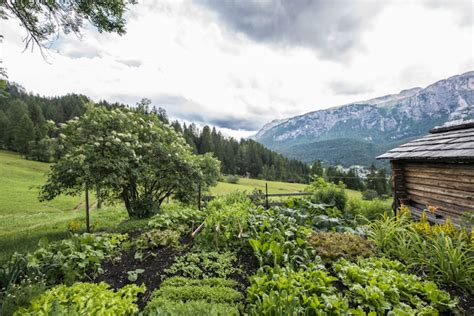 cuisine f騅rier food restaurants with kitchengarden in south tyrol stefano à photographer