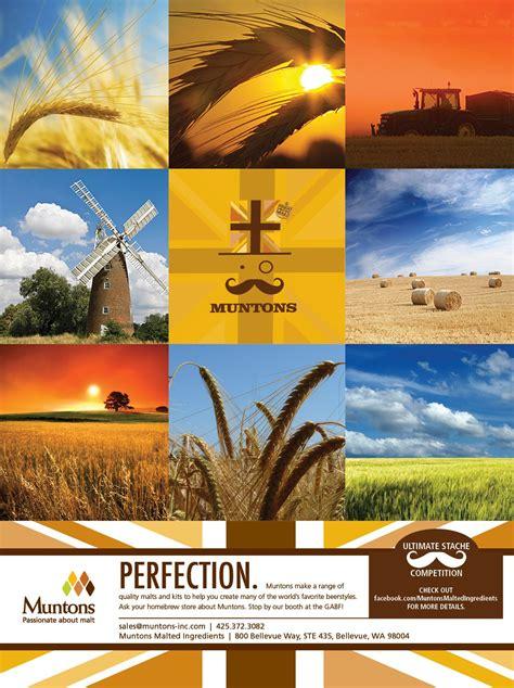 ad design ad design flyer design print ads