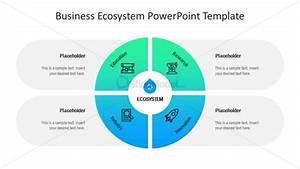 Business Ecosystem 4 Steps Diagram Ppt