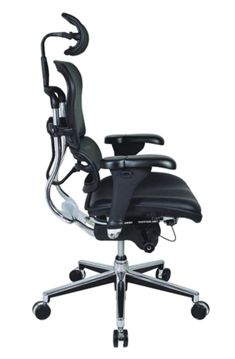 eurotech ergohuman ergonomic office chair lem4erg by raynor