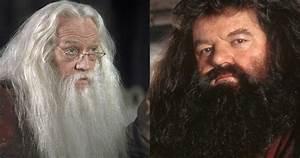 harry potter 10 reasons why hagrid dumbledore aren 39 t