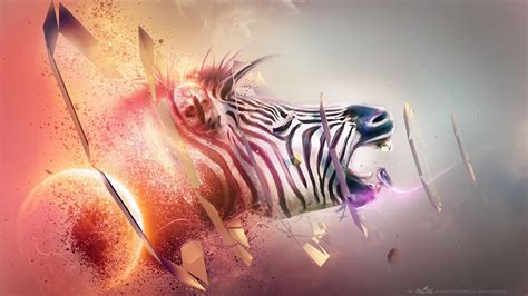 animal hd wallpaper background image  id