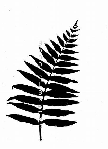 Fern Leaf Botanical Leather Drawing Simple Silk