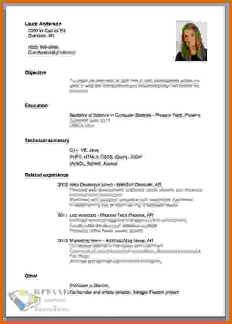 professional resume and cv writing 8 how to make professional resume lease template