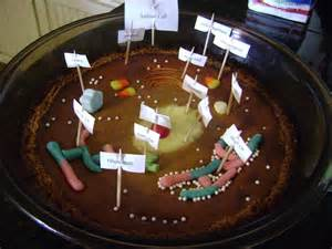 Edible Animal Cell Cake Projects