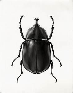 Scarab Beetle by ~MedIllin http://medillin.deviantart.com ...