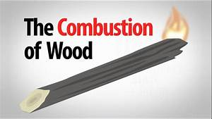 Science Spotlight  The Combustion Of Wood