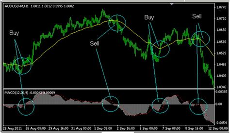 best trading best trading system forex ema macd trading system