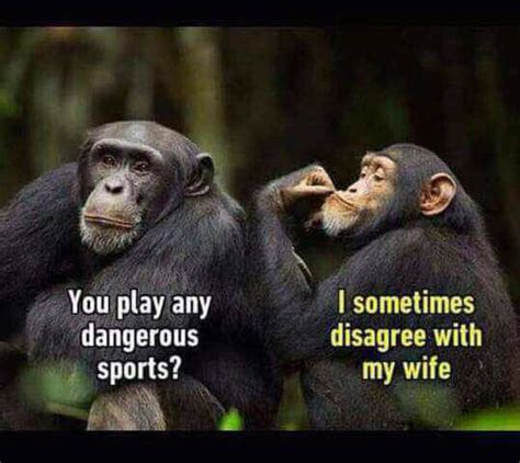 Funny Wife Memes - funny memes the funniest memes on the internet