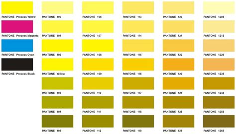 gold color code in ms paint yellow pantone color chart color yellow pantone color chart