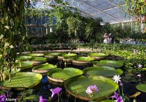 Botanical Gardens Washington Dc by Join The Kew London S Greatest Botanical Garden Is More