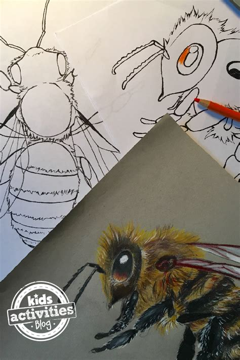 honey bee coloring pages  kids