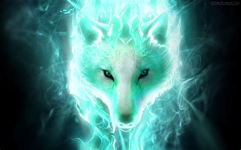 Cool Animal Wallpapers Wolf - wolf wallpaper for computer wallpapersafari