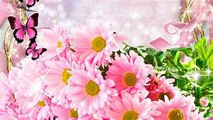 Spring Flowers And Butterflies Wallpaper High Definition ...