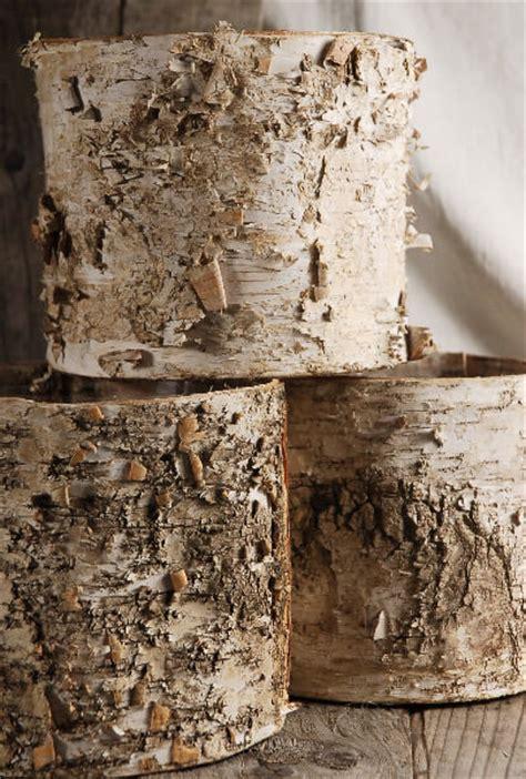 birch bark planter  plastic liner