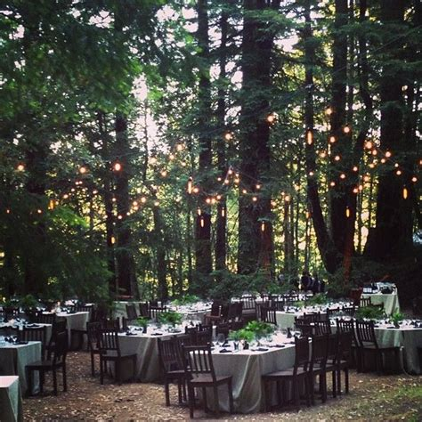 25 Best Ideas About Forest Wedding Reception On Pinterest