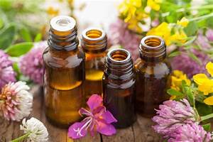 Essential Oils  U2013 Botanicals By Anita