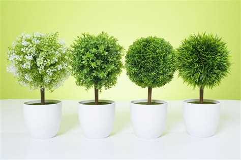 Artificial Topiary Tree & Ball Flowers Buxus Boxwood