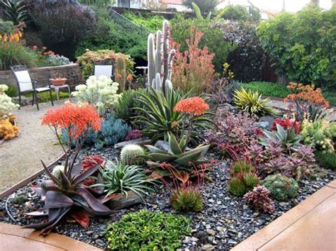 succulent garden bed beautiful succulent garden extraordinary landscapes in san luis obispo county succulent