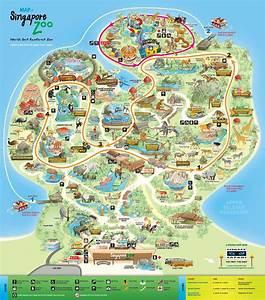 From Across the Seas: Singapore Zoo and Night Safari