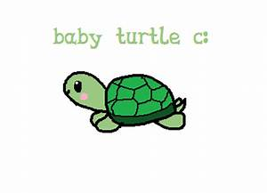 Cute Baby Turtle Drawings | www.pixshark.com - Images ...