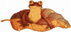 Friendly Frog Intarsia Pattern