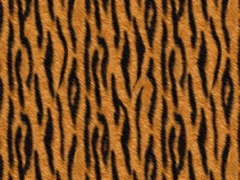 Cheap Animal Print Wallpaper - animal print backgrounds free animal print patterns and