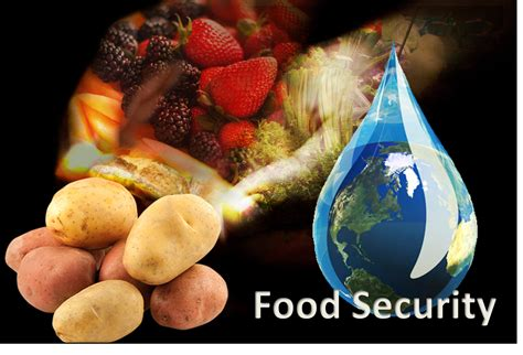 solution cuisine food security a growing global concern