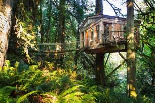 unique wedding venues island rainforest hotel built in the trees tree house point