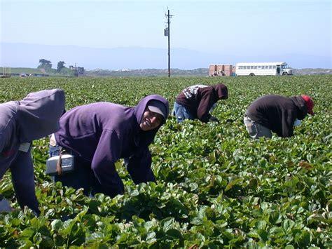 Senate Bill Would Protect Farmworkers - Washington AG Network