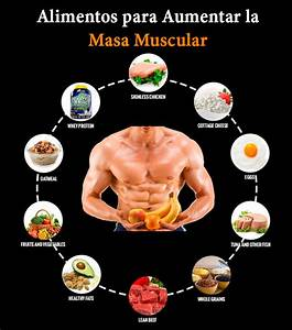 Conoce los alimentos para aumentar la masa muscular y for Alimentos para aumentar la masa