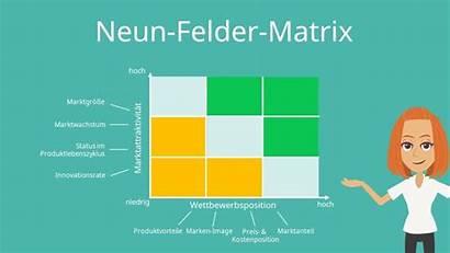 Mckinsey Matrix Portfolio Felder Neun Beispiele Nach