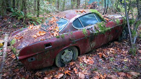 forest find volvo p update