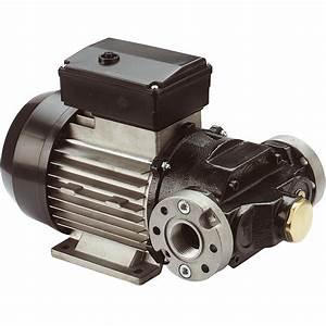 Pompe A Fioul Electrique : pompe lectrique gasoil e 80 e 120 230 v 70 l min ou 100 l min ~ Melissatoandfro.com Idées de Décoration