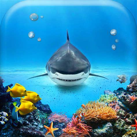 Beautiful Sea Animals Wallpapers - underwater wallpaper gallery beautiful sea animals