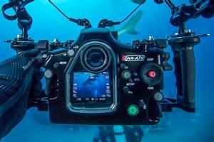 Light Photography Camera Settings Nauticam Sony A7 Ii Housing Announced Underwater