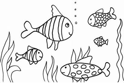 Fish Coloring Printable Pages Template Templates Colouring