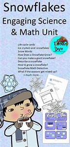Snowflakes  Life Cycle  Project Based Learning  Ngss