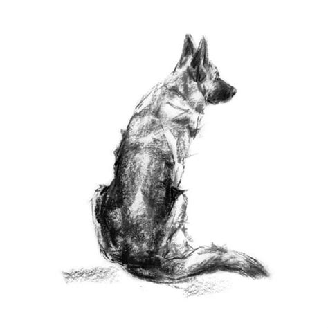 Kleurplaat Deir by Quot The Shepherd Quot Gsd Sketch Print