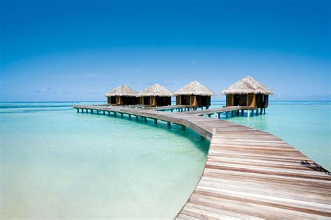 fragrant flowers maldives resort exclusive offers with simply maldives