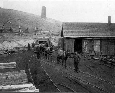 01_mine_mules_leaving_mi - Work Conditions